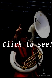 MARDI GRAS BB_JazzFestWiesen_200702_(c)HELMUT_RIEDL-4308