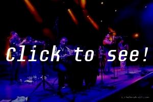 THE CAT EMPIRE_Jazz&Dance-Wiesen_180714_(c)HELMUT RIEDL-8526